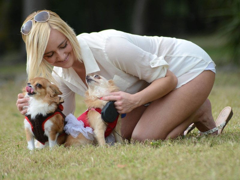 Exclusive... Kate England Walks Her Dogs In Miami